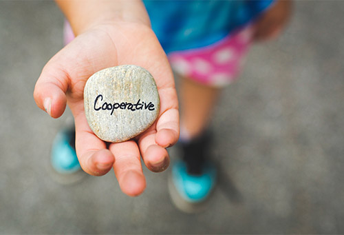 What is a cooperative?