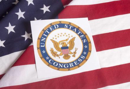 U.S. Congress - flag