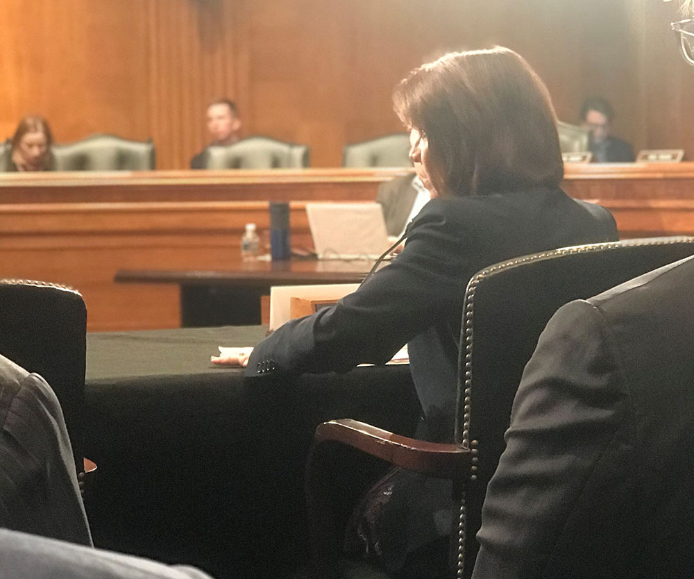 Cheryl DeMars testifies before the U.S. Senate H.E.L.P. Committee (Nov. 28,2018)